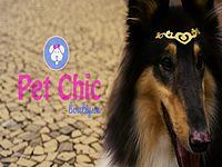 Pet Chic_Deutsch.mpeg