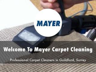 Mayer Carpet Cleaning Presentation.pdf