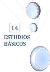 14. ESTUDIOS BASICOS.pdf