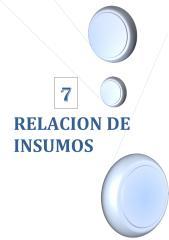 7. RELACION DE INSUMOS.pdf