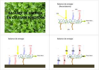 Balance_energ_a_culltivos_forzados.pdf