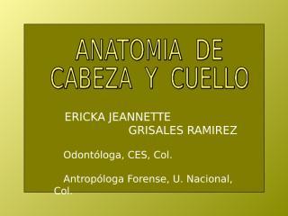 Huesos Del Craneo.ppt