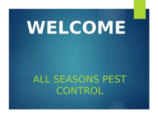 All Seasons Pest Control.pptx