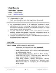 Eng Ziad Homeid CV ly - En.doc